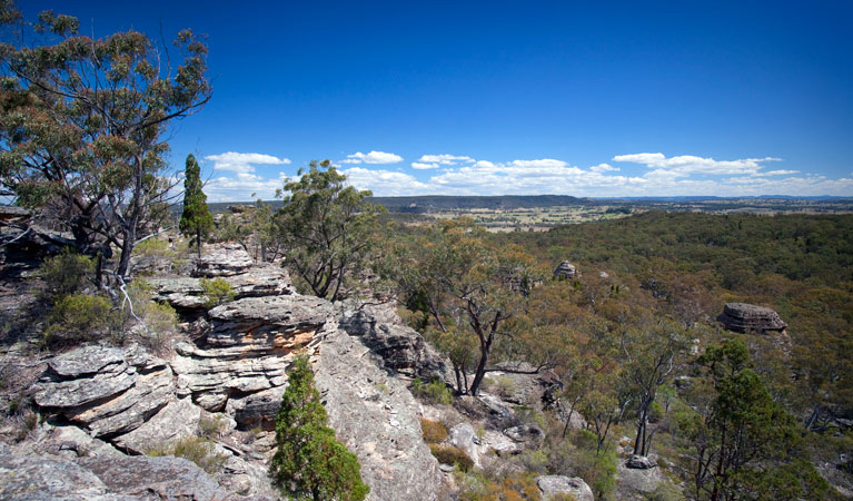 Munghorn Gap Nature Reserve - Accommodation Adelaide