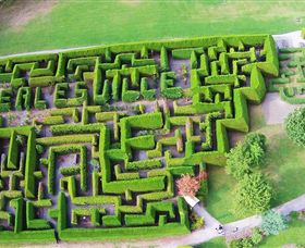 Hedgend Maze and Healesville Laser Sport - Accommodation Adelaide