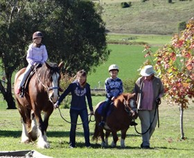 Bathurst Farm Experience - Accommodation Adelaide