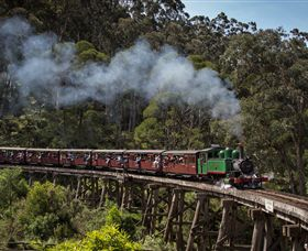 Puffing Billy Steam Railway - Accommodation Adelaide