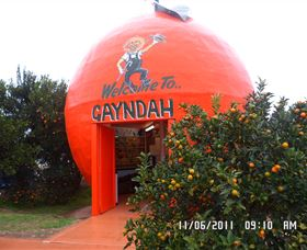 Gayndahs Big Orange - Accommodation Adelaide