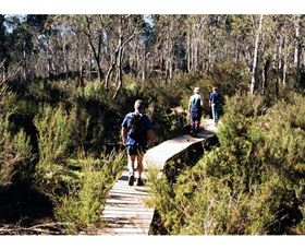 Hume and Hovell Walking Track - Henry Angel Trackhead - Accommodation Adelaide