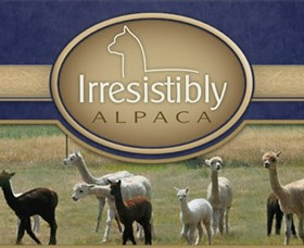 Marchmont Park Alpacas - Accommodation Adelaide