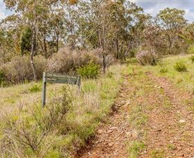 Old Mountain Road Walking Track - Accommodation Adelaide