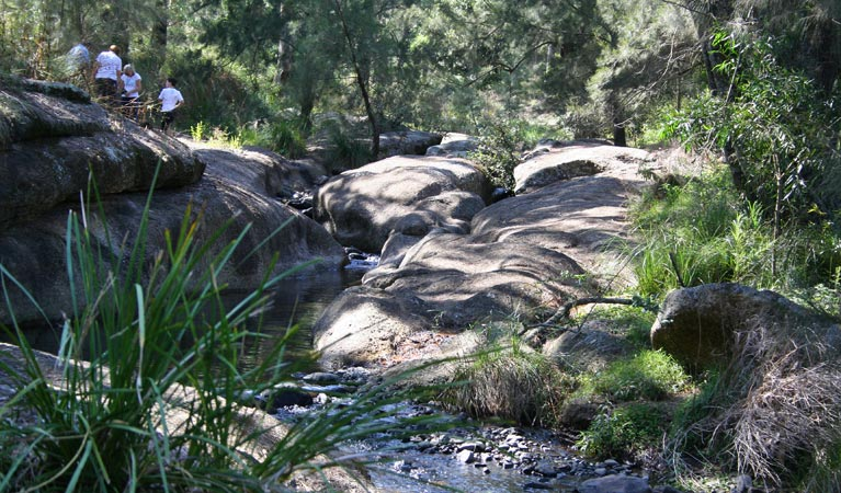 Towarri National Park - Accommodation Adelaide