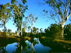 Dingo Creek Park - Accommodation Adelaide