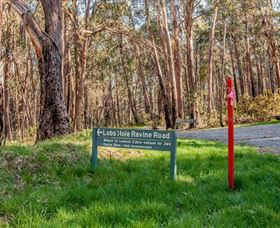 Lobs Hole Ravine 4WD Trail - Accommodation Adelaide