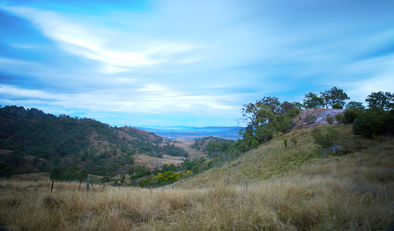 Burning Mountain Nature Reserve - Accommodation Adelaide