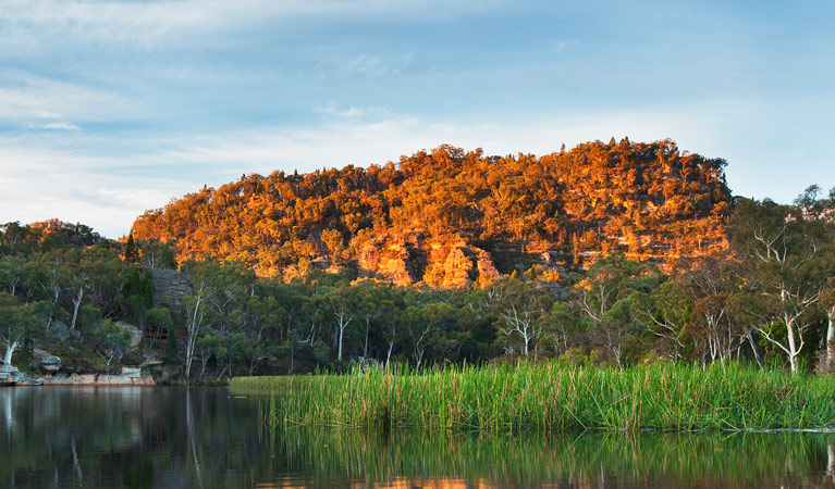 Wollemi National Park - Accommodation Adelaide