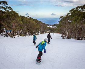Mt Baw Baw Alpine Resort - Accommodation Adelaide