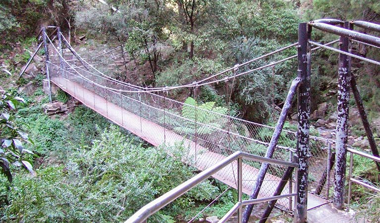 Jenolan River walking track - Accommodation Adelaide
