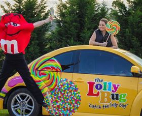 The Lolly Bug - Accommodation Adelaide