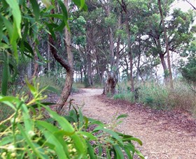 Mount Mutton Walking Trail - Accommodation Adelaide