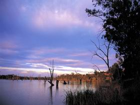 Loch Luna Game Reserve and Moorook Game Reserve - Accommodation Adelaide