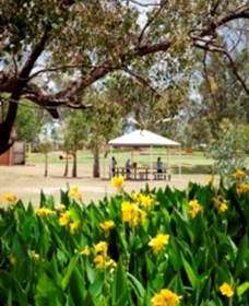Charleville - Graham Andrews Parklands - Accommodation Adelaide