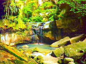 Carnarvon Gorge Carnarvon National Park - Accommodation Adelaide