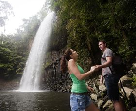 Millaa Millaa Falls - Accommodation Adelaide