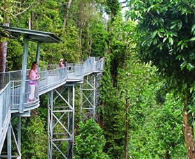 Mamu Tropical Skywalk - Accommodation Adelaide