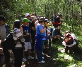 Warrumbungle National Park Discovery Program - Accommodation Adelaide