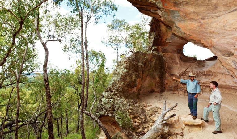 Pilliga National Park - Accommodation Adelaide