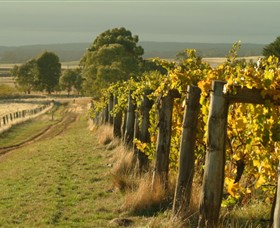 Captains Creek Organic Wines - Accommodation Adelaide