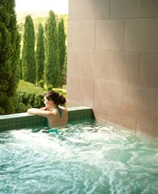 The Mineral Spa - Accommodation Adelaide