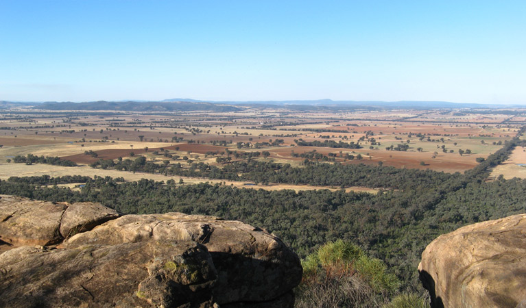 Basin Gully to Eualdrie lookout track - Accommodation Adelaide