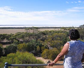 Lake Grace Lookout - Accommodation Adelaide