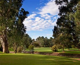 Commercial Golf Course - Accommodation Adelaide