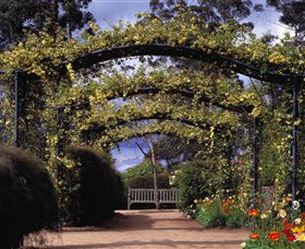 Blue Mountains Botanic Garden - Accommodation Adelaide
