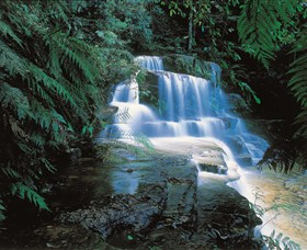 Leura Cascades - Accommodation Adelaide