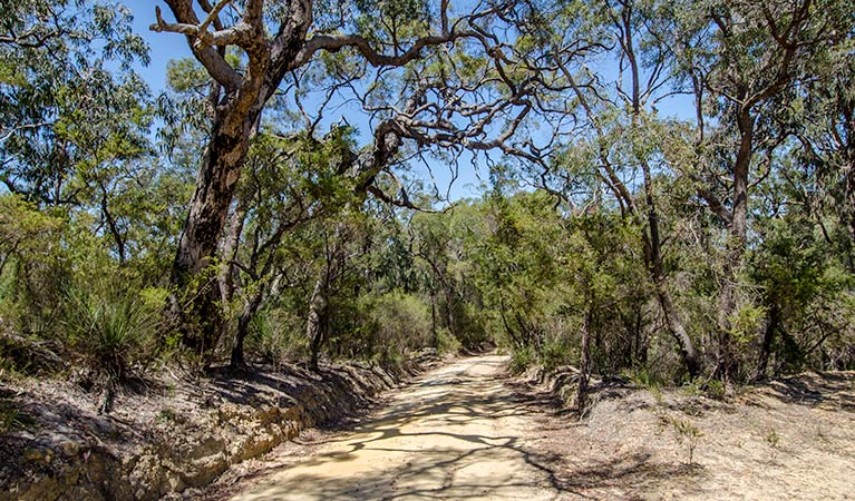 Howes trail - Accommodation Adelaide