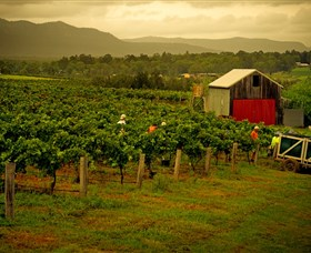 Around Hermitage Wine and Food Trail Hunter Valley - Accommodation Adelaide