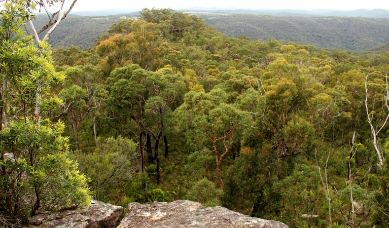 Mount Olive lookout - Accommodation Adelaide