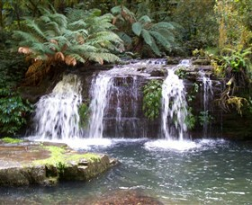 Barrington Tops National Park Walks - Accommodation Adelaide