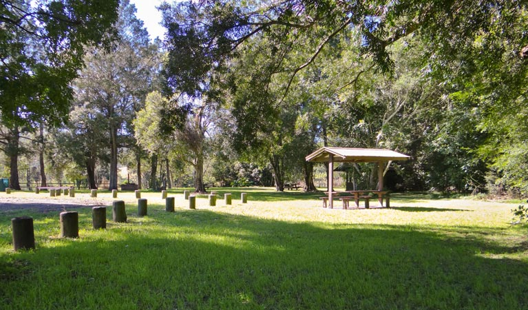 Moore Park picnic area - Accommodation Adelaide