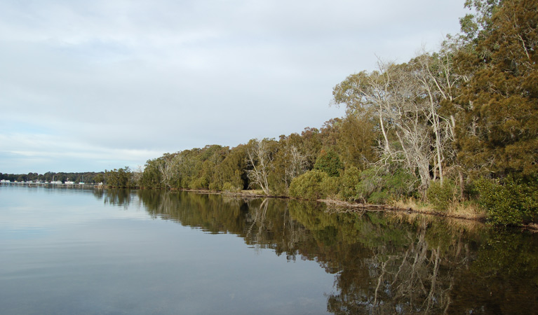 Lake Macquarie State Conservation Area - Accommodation Adelaide