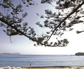 Terrigal Beach - Accommodation Adelaide