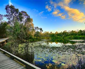 Berrinba Wetlands - Accommodation Adelaide