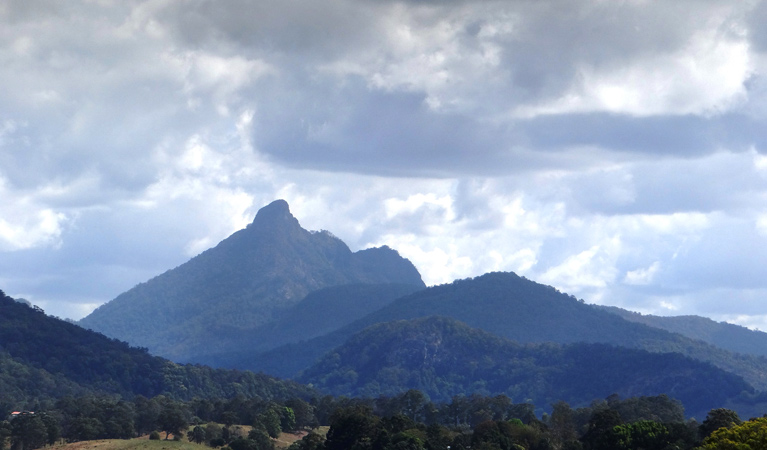 Wollumbin National Park - Accommodation Adelaide