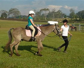 Port Macquarie Horse Riding Centre - Accommodation Adelaide
