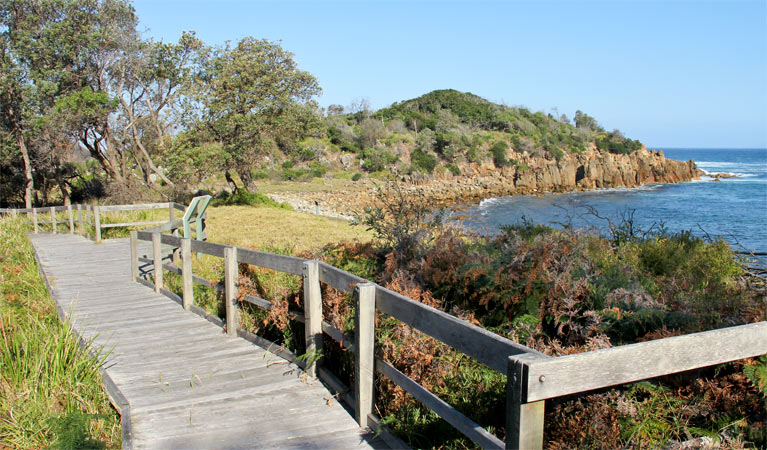 Mimosa Rocks walking track - Accommodation Adelaide