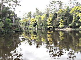 Arthur River - Accommodation Adelaide