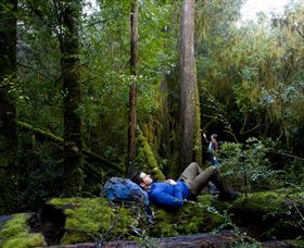 The Tarkine Drive - Accommodation Adelaide