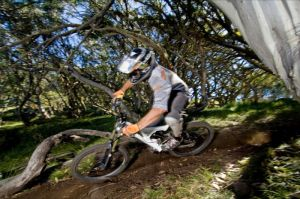 All Terrain Cycles - Accommodation Adelaide