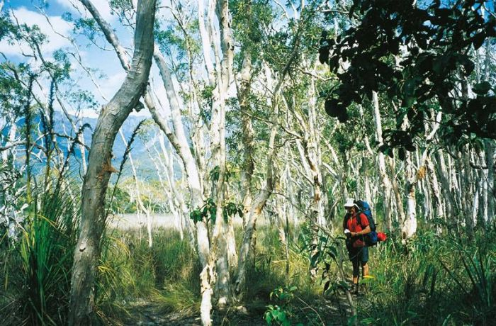 Thorsborne Trail, Hinchinbrook Island National Park