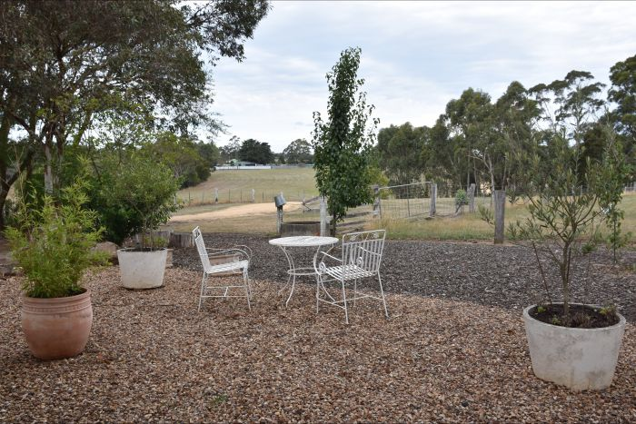 Cygnet Park Country Retreat - Accommodation Adelaide