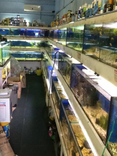 Clearwater Aquariums - Accommodation Adelaide