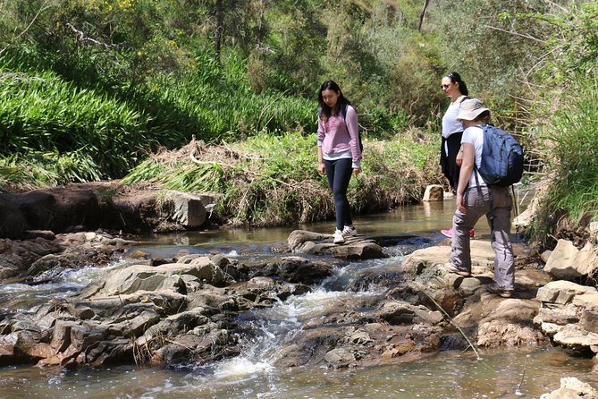 Small Group Bush Walk & BBQ with Wine Day Trip from Adelaide