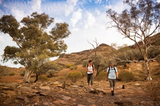 Flinders Ranges 3 Day 4WD Small Group Eco Tour from Adelaide